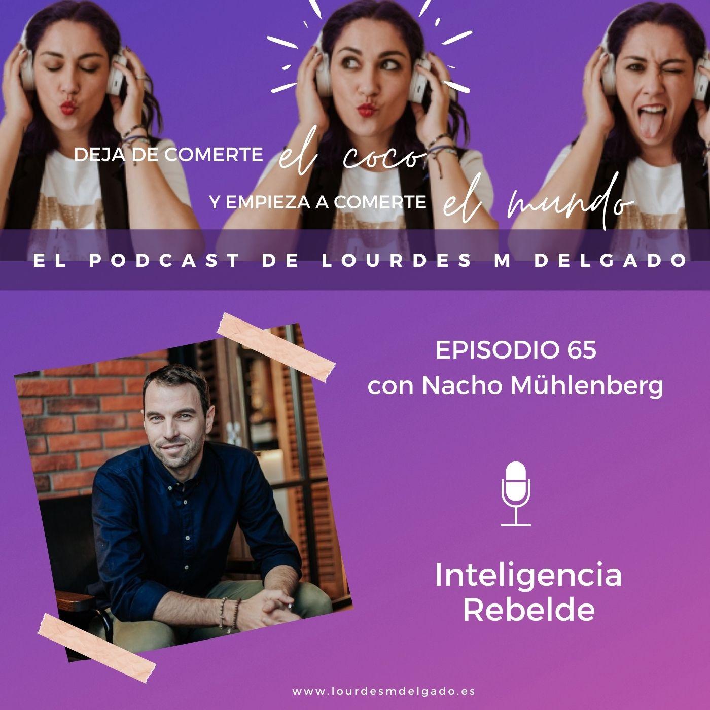 Inteligencia rebelde: inteligencia emocional, económica y emprendedora